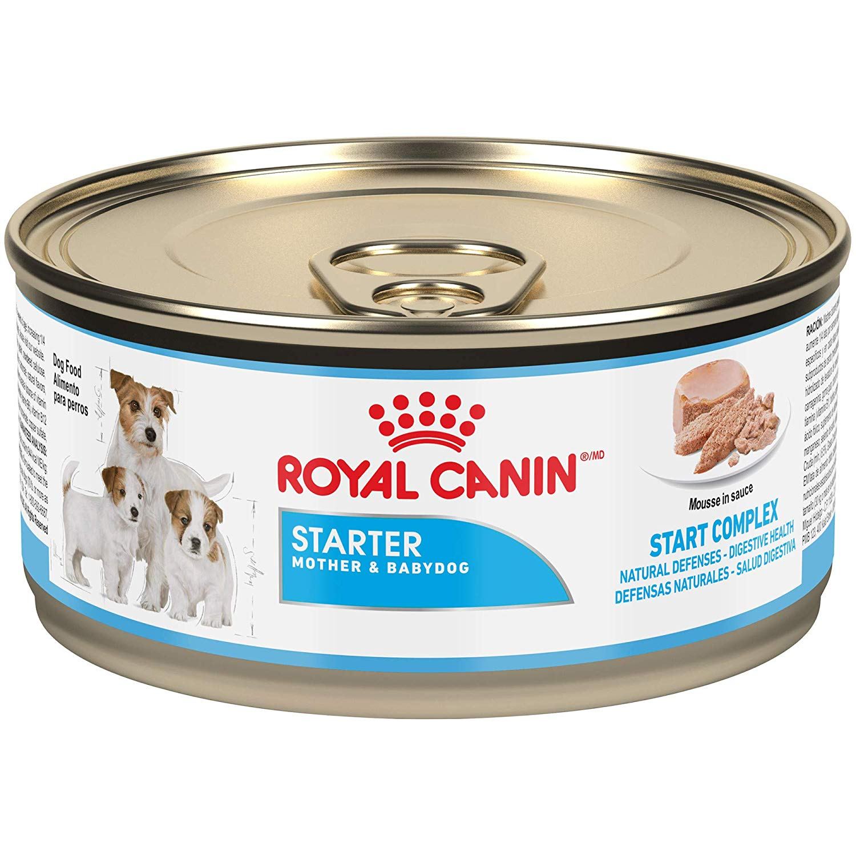Royal Canin Chn Starter Mousse 195g Getpetfud Com